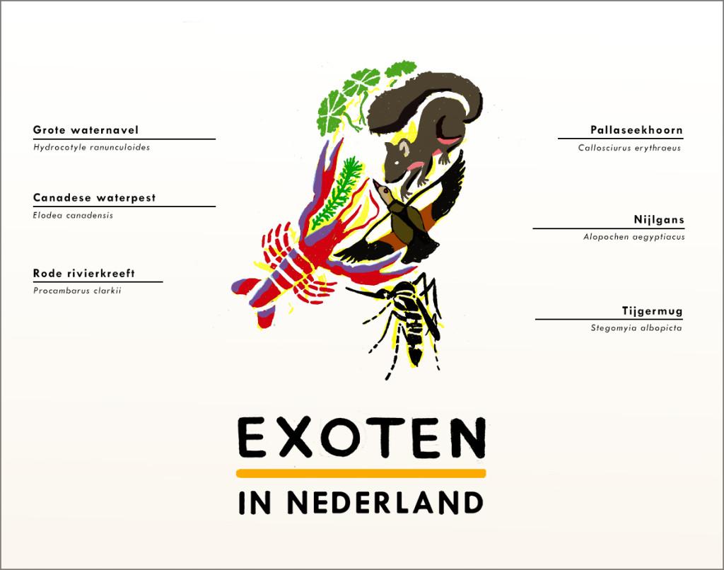 'EXOTEN IN NEDERLAND' LOGO